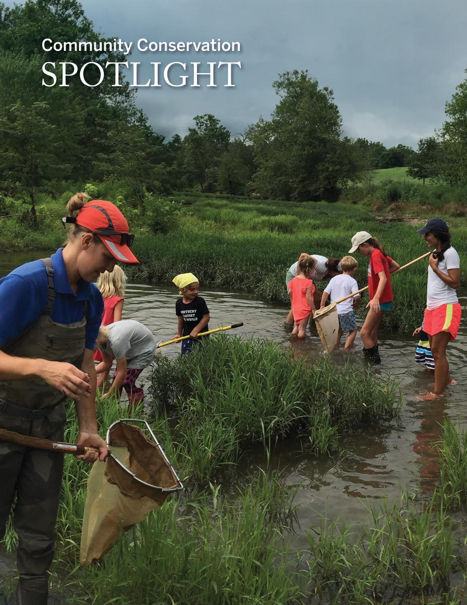 Kids looking for crawdads and frogs