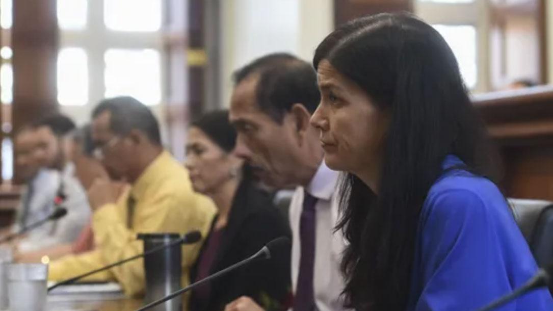 Committee On Land Trust Hearing Frank San Nicolas PDN