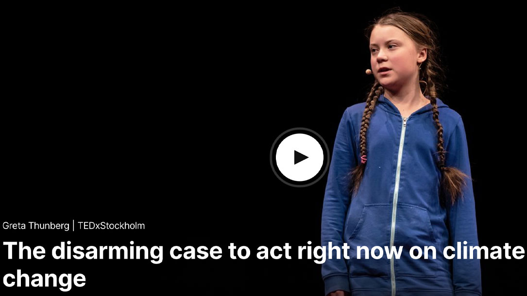 Greta Thunberg The Disarming Case To Act Now On Climate Change Ted Talk