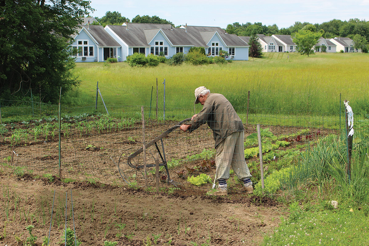 Pioneer Valley of Massachusetts: Lathrop and Applewood