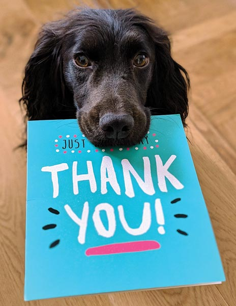 Thank you note held by a cute dog named Charlie