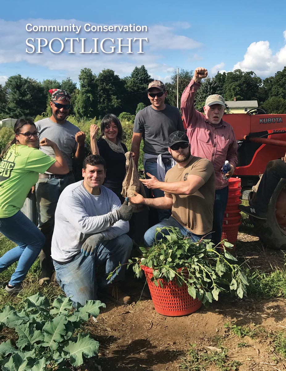 a group of veterans working on a farm