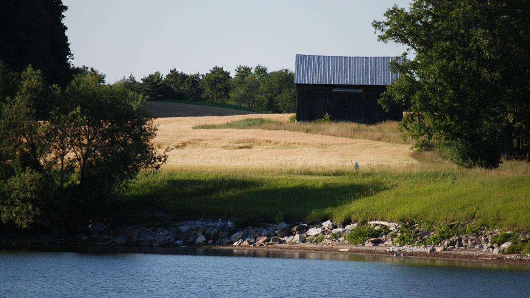 Barn At Pond