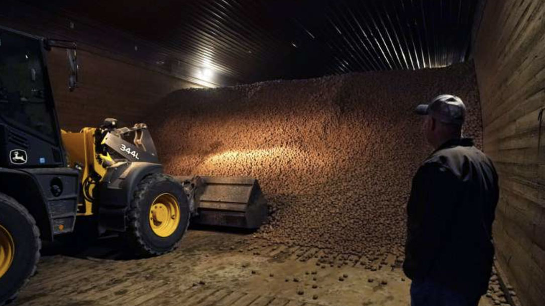 Grain Strorage
