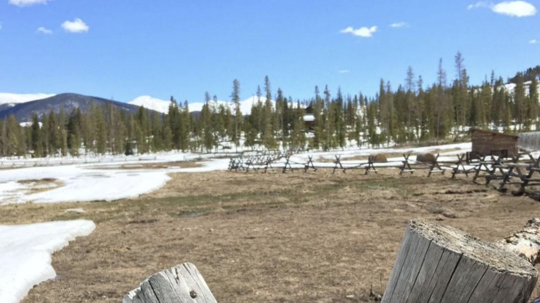 Melting Snow Field