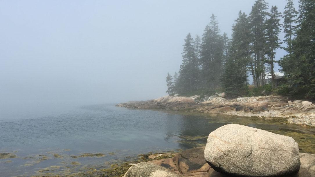 Misty Rocky Shore