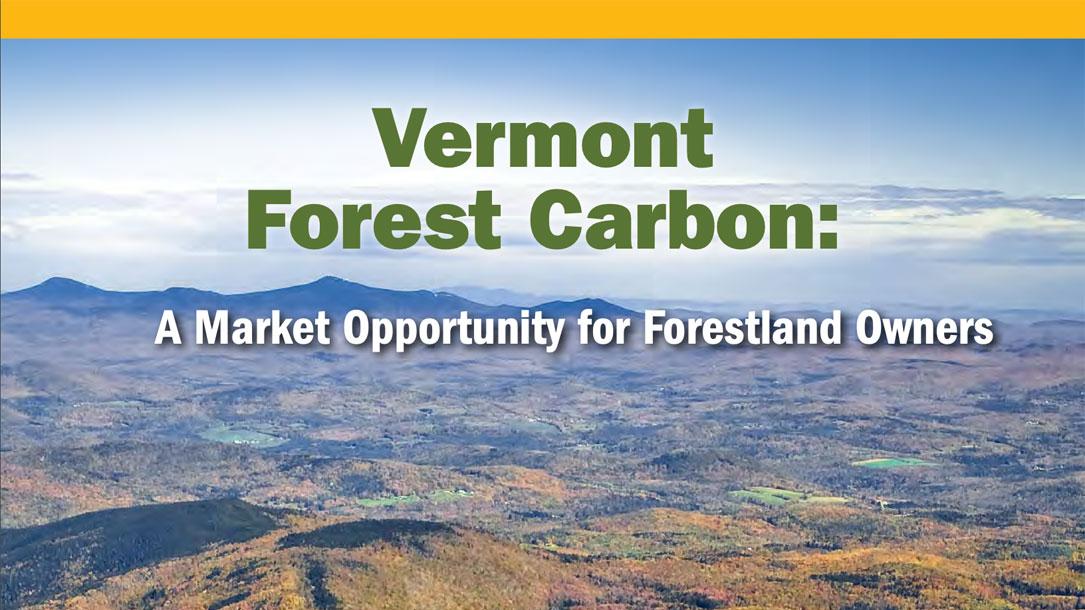Vermont Forest Carbon